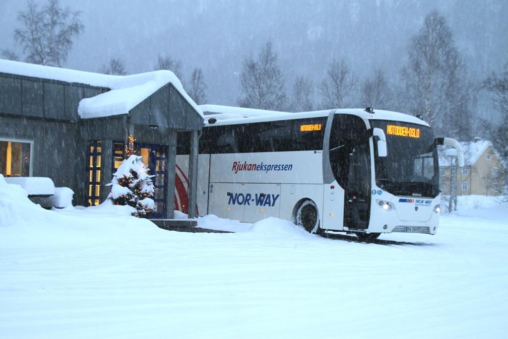 buss-1_3482.jpg